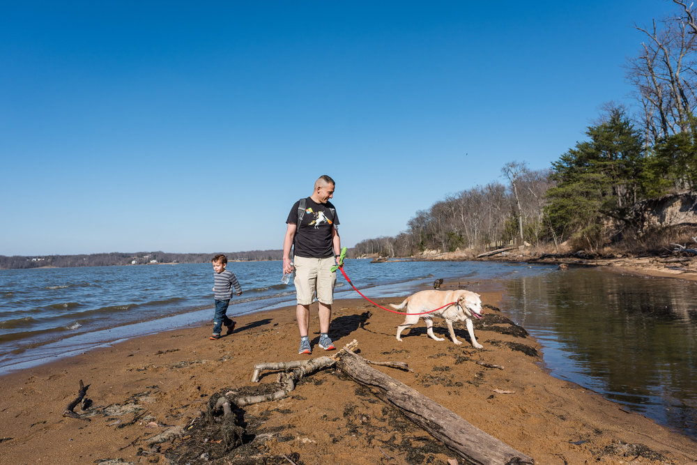 father-walking-with-son-and-dog-at-Mason_neck-State-Park-in-Lorton-Virginia-by-Family-Photographer-Nicole-Sanchez.jpg