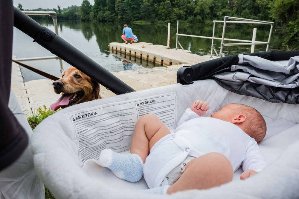 Dog with newborn outside by NOrthern Virginia Family Photographer Nicole Sanchez