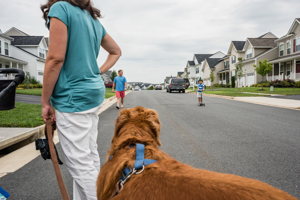 Family taking a walk with dog in NOrthern Virginia by Nicole Sanchez Photography