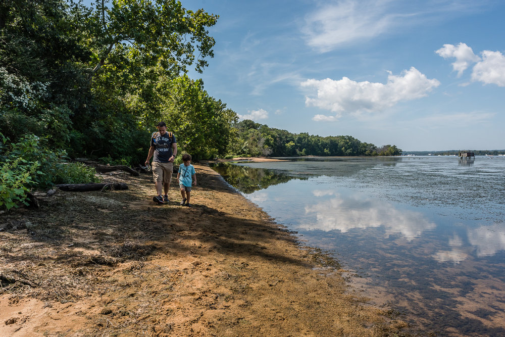 father and son walking on beach at potomac river in northern virginia by family photographer nicole sanchez