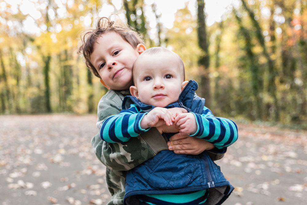 Brothers playing in fall colors by Northern Virginia Family Photographer Nicole Sanchez