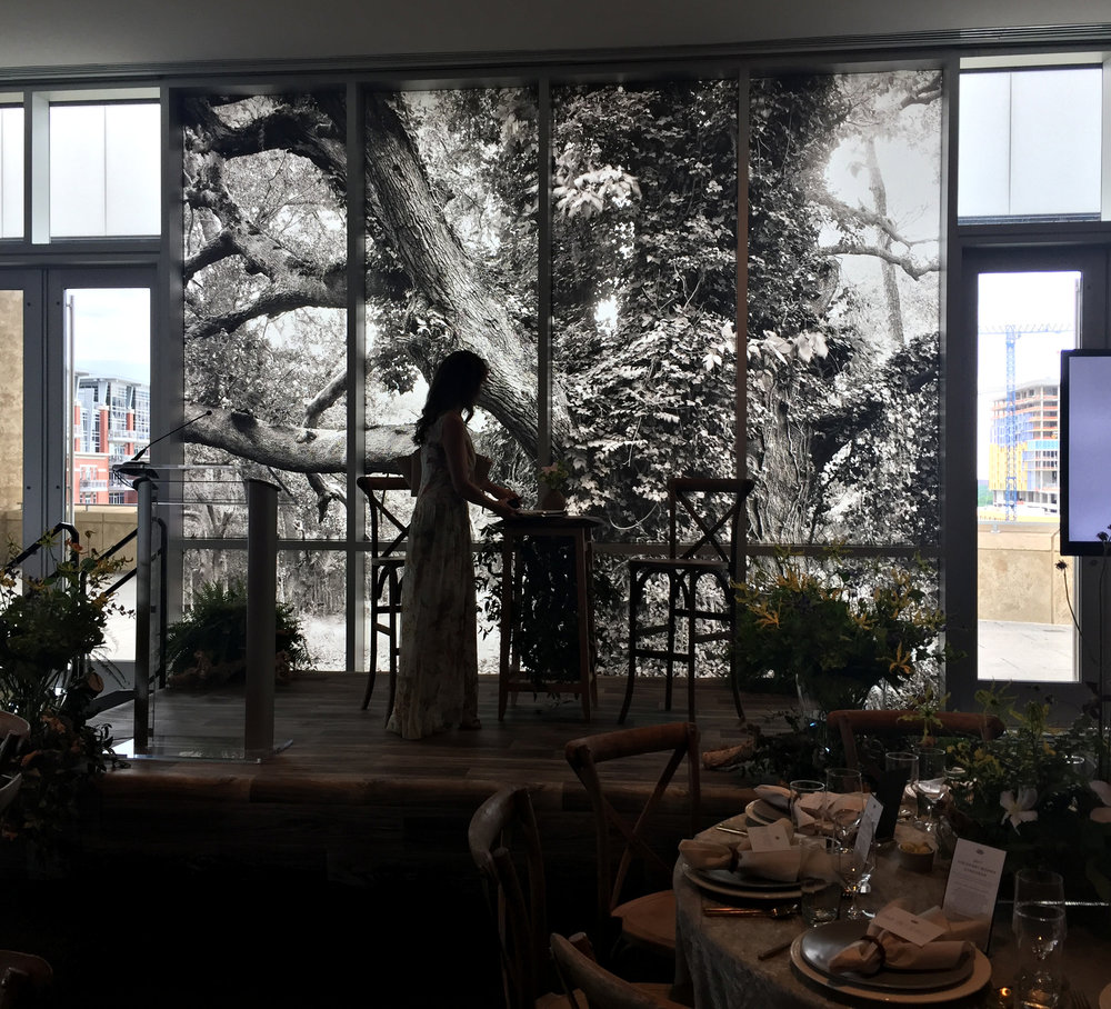 Visionary Women's Lecture, my images installed on the windows behind me as I spoke about my book, Passage.