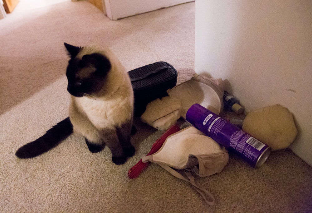 Mark's one-eyed cat Sephora stops to inspect Nicky Serene's drag accessories, including hairspray, a makeup bag, a bra and padding. Mark's drag attire is usually scattered throughout the house as he transforms into Nicky Serene.