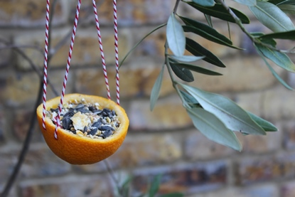 This bird feeder made from an orange is simple and quick to make.