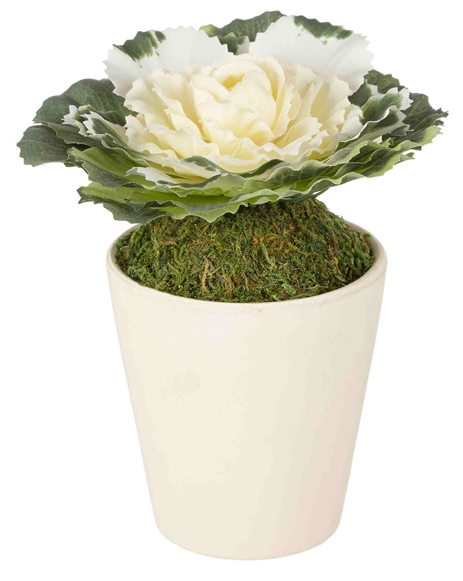 OPT FOR SIMPLE STYLE Complete a bare windowsill or shelf space with a single potted cabbage rose in a white ceramic pot, adding a simple touch of country chic to your home's interiors. John Lewis CabbageRose, £8 www.johnlewis.com
