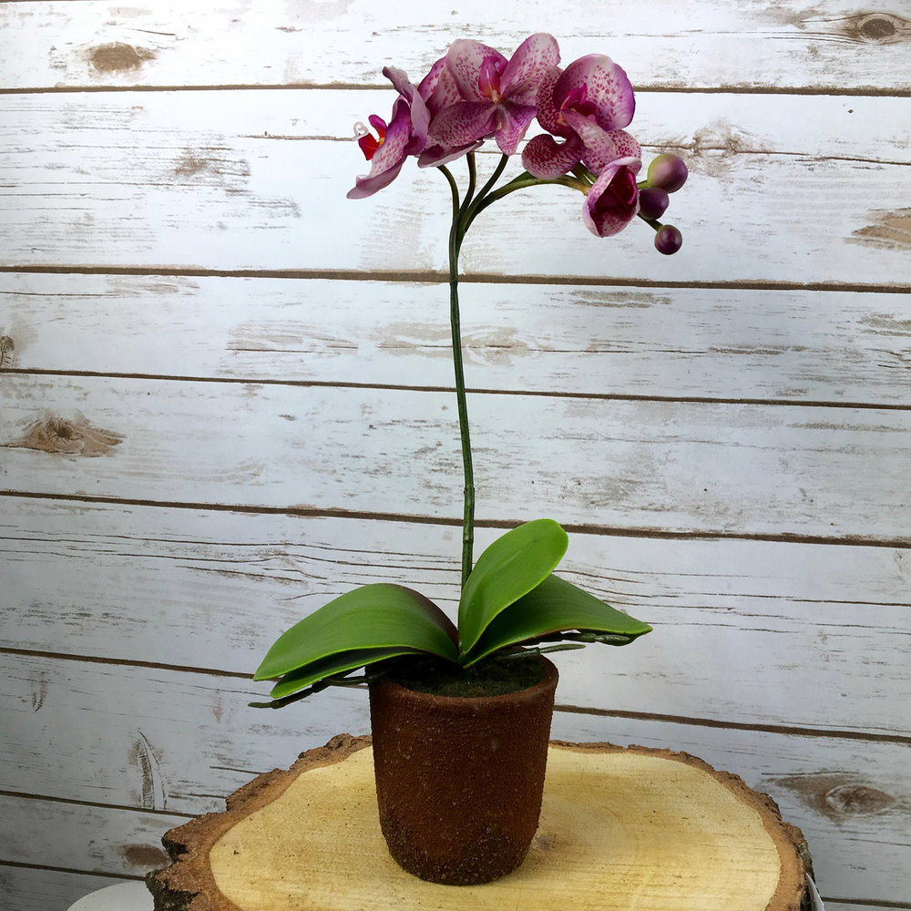 INJECT SOME DRAMA This real-to-the touch Dark Pink Phalaenopsis orchid potted in a rustic ceramic pot is a standing ovation in itself. £19.99 www. artificialorchids.co.uk
