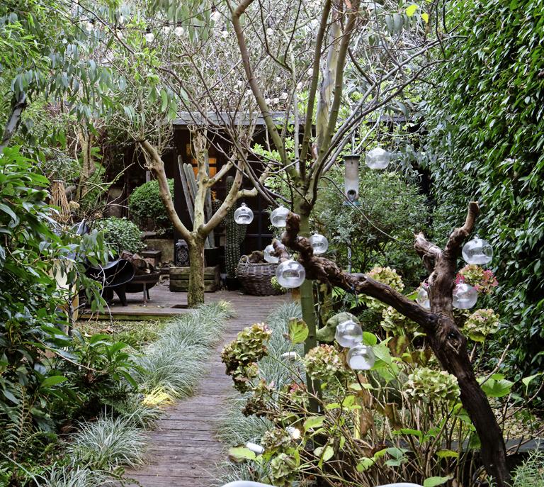 My fairytale garden is my sanctuary modern gardens for Jungle garden design ideas