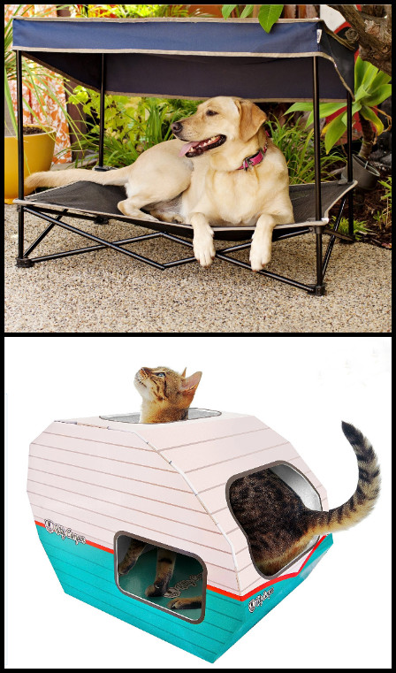 cat camper.PNG