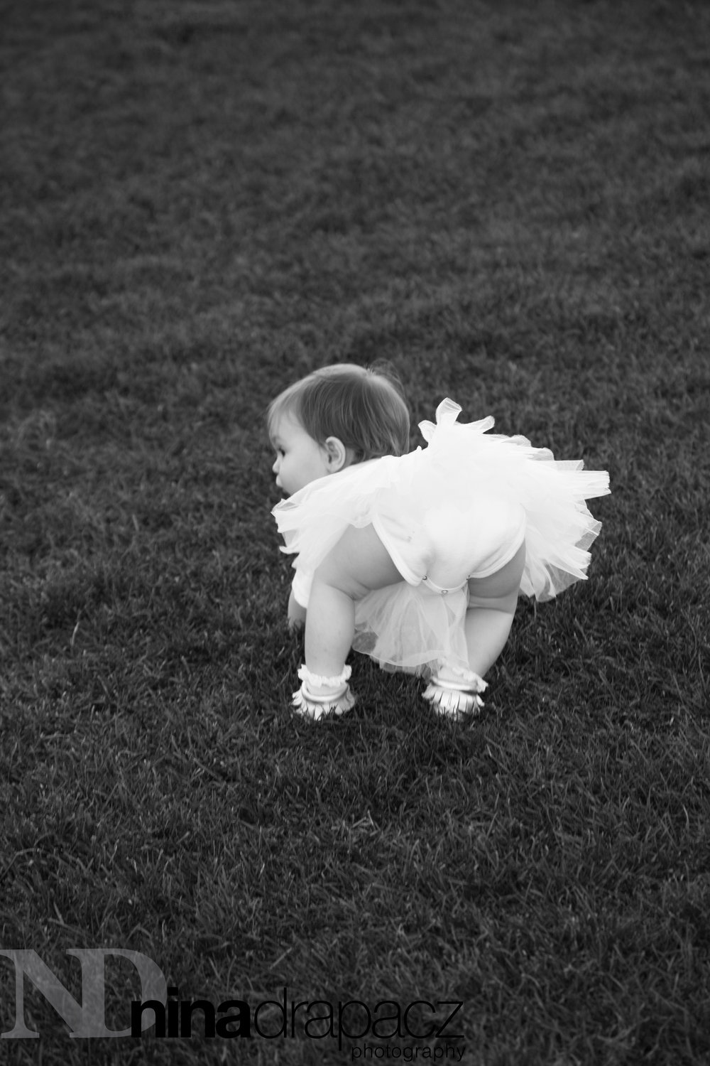 toddlerphotography121.jpg