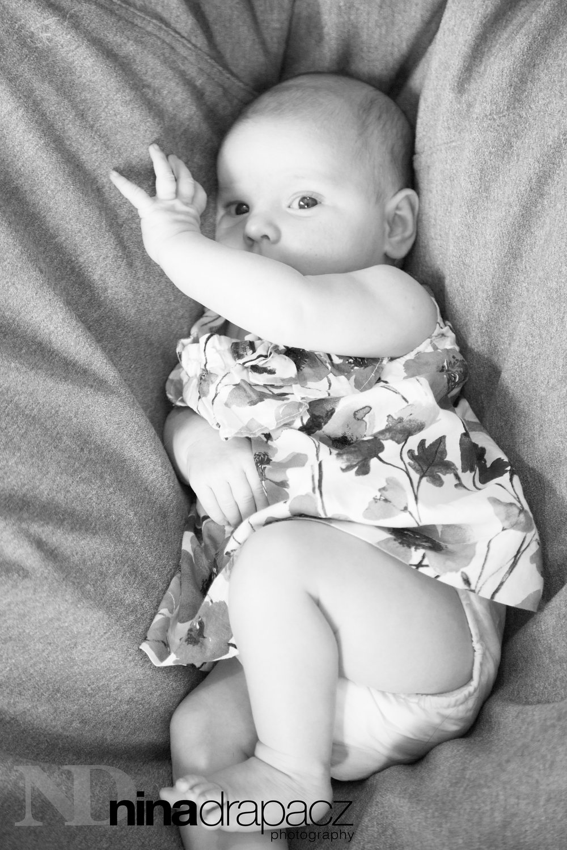 babyportraits39.jpg