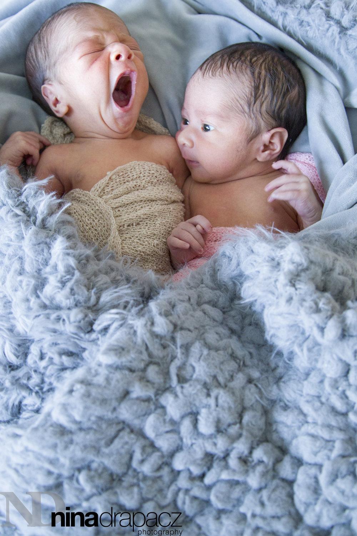 twinbabies.jpg