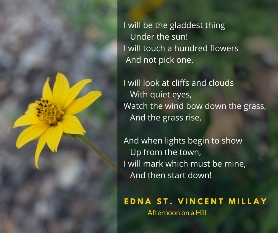 "Edna St Vincent Millay poem ""Afternoon on a Hill"" with flower from Brooklyn Botanic Garden"
