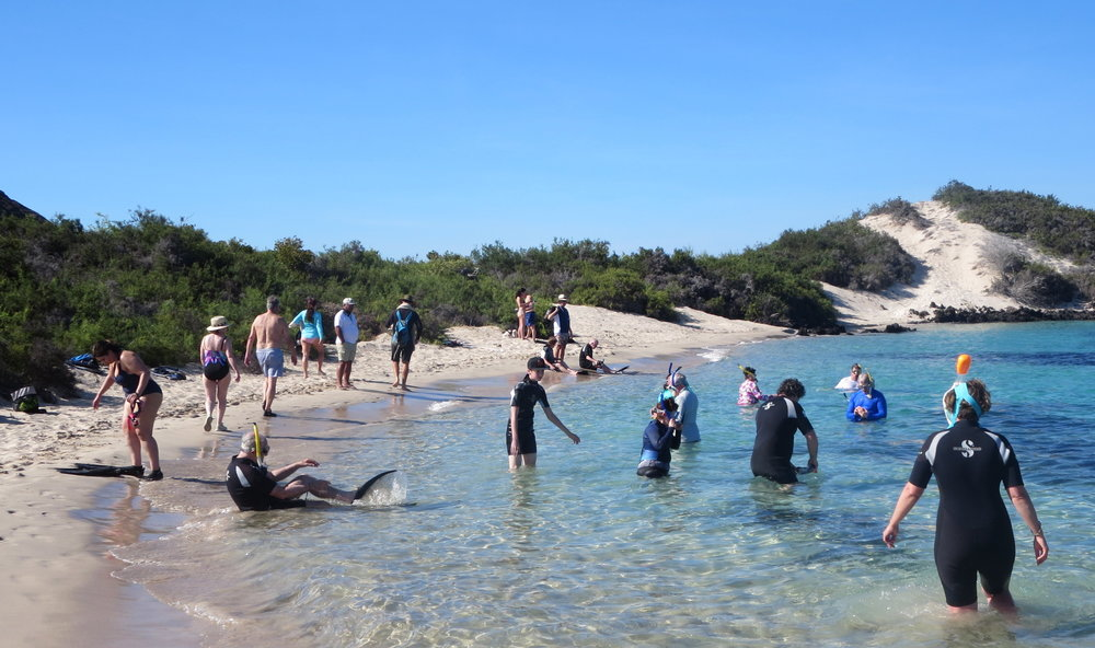 More Snorkeling - Sullivan Bay.JPG