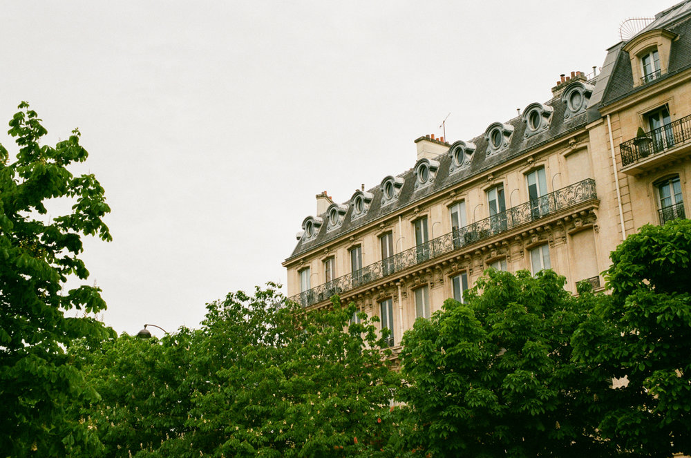 mid-century building appearing over the deep green trees in Paris