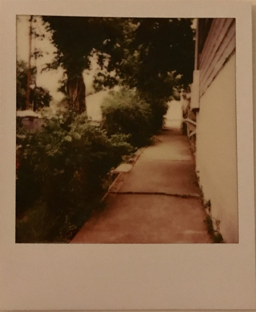 waiting in line for BBQ, alley, vintage polaroid