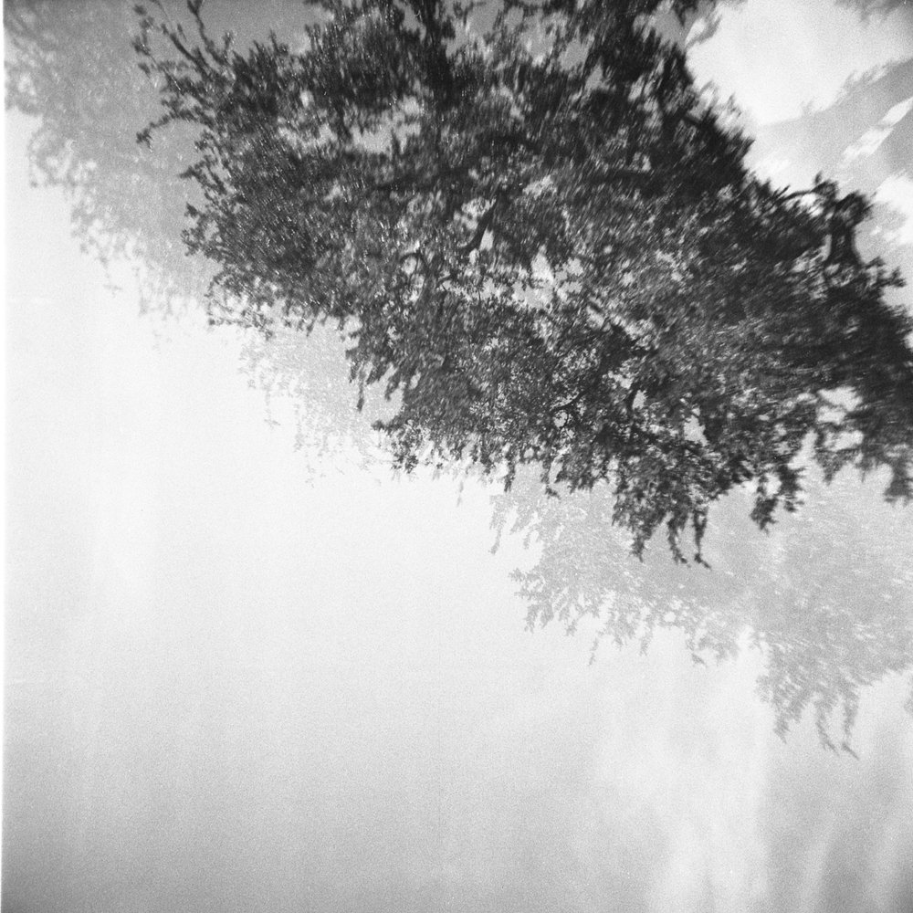 120mm self developed black and white photo