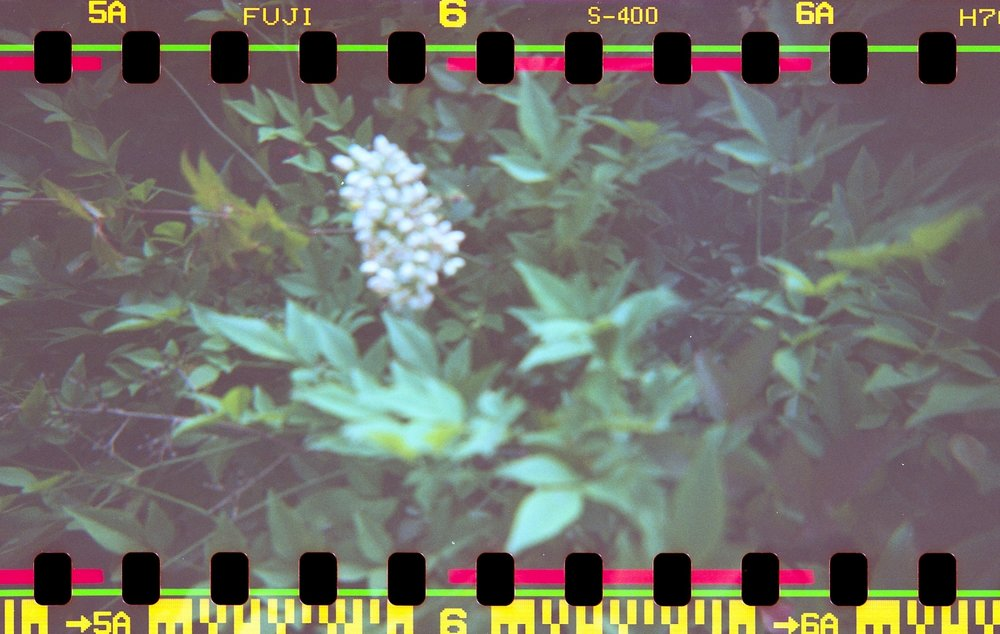 how to shoot 35mm film in a 120mm holga