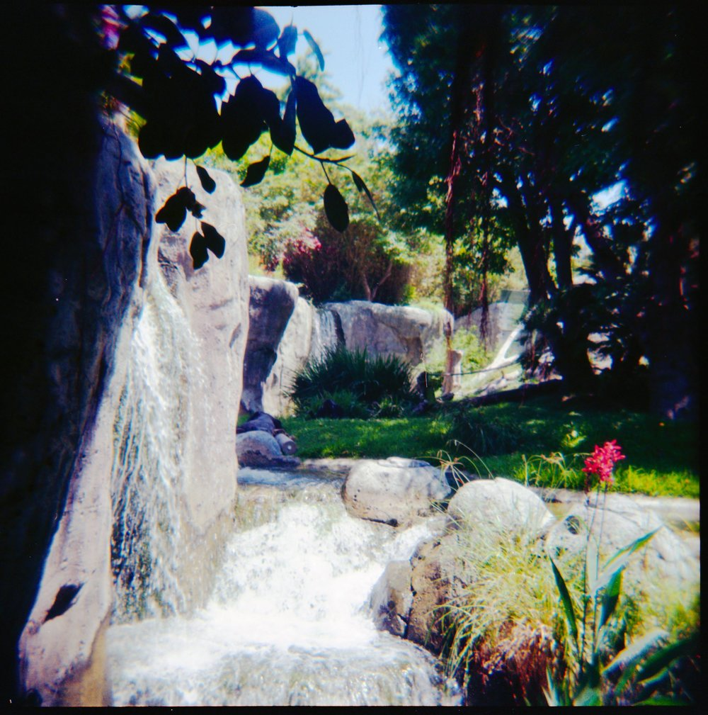 120mm film photo of the San Diego Zoo