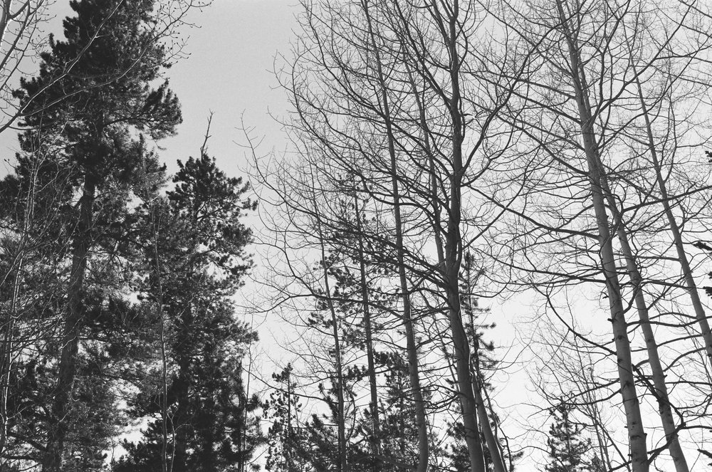 how to shoot HP5 at iso 500