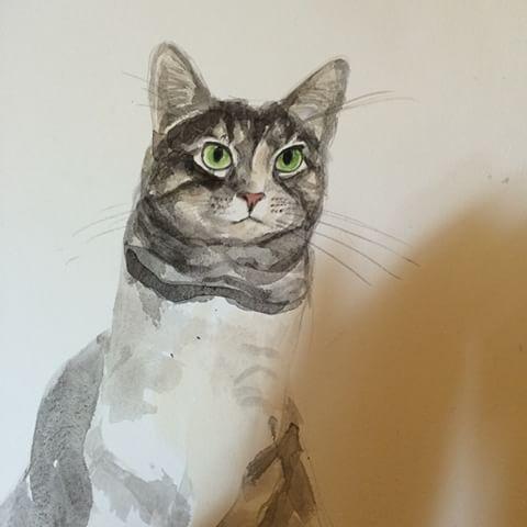 pet portrait 2.jpg