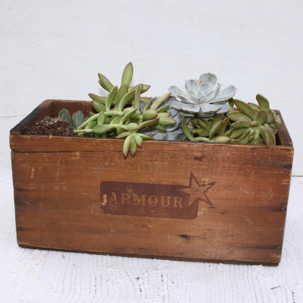 Crates medium wooden box.jpg