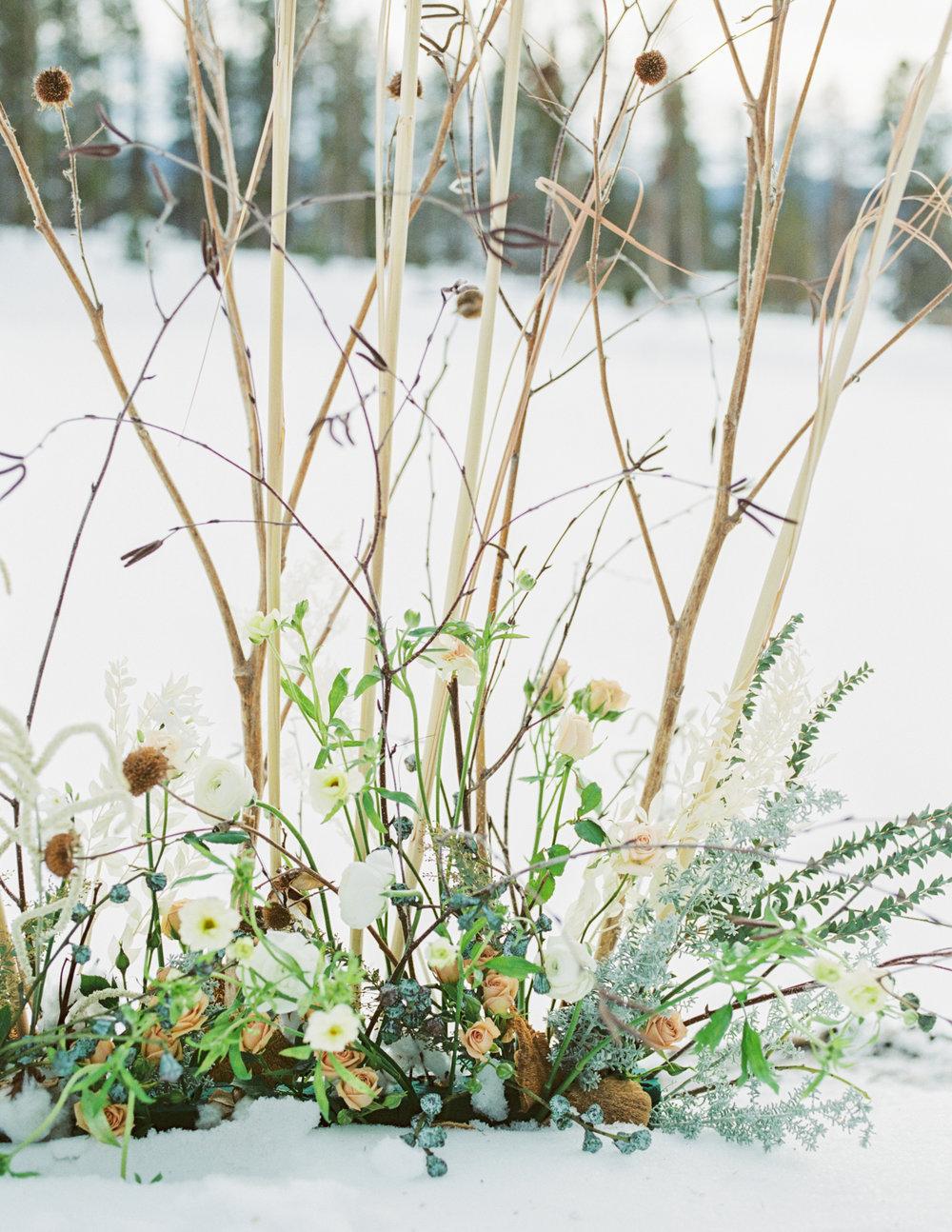 WinterEditorial-161.jpg