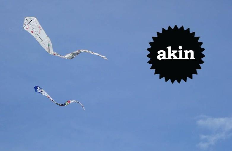 Kite Flying Workshop (5).jpeg