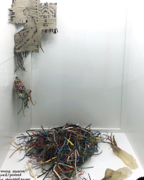 'Piqued/Peaked' by Carmina Miana - December 2018/ January 2019  - Akin Vitrine Gallery Installation.
