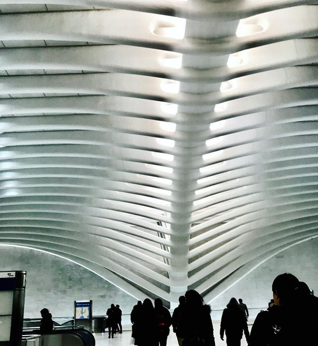 A spine of the #oculus at the PM commute... #nyc #oculusnyc #commute #downtown #wtc #nycarchitecture #manhattan