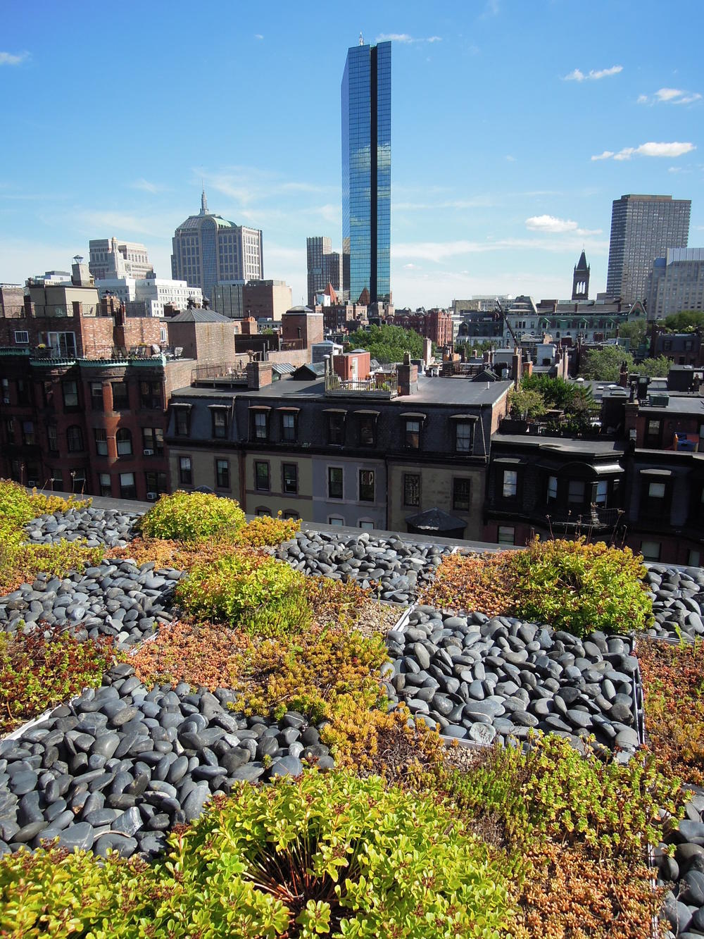 Back Bay Roof Garden   Boston, Mass.