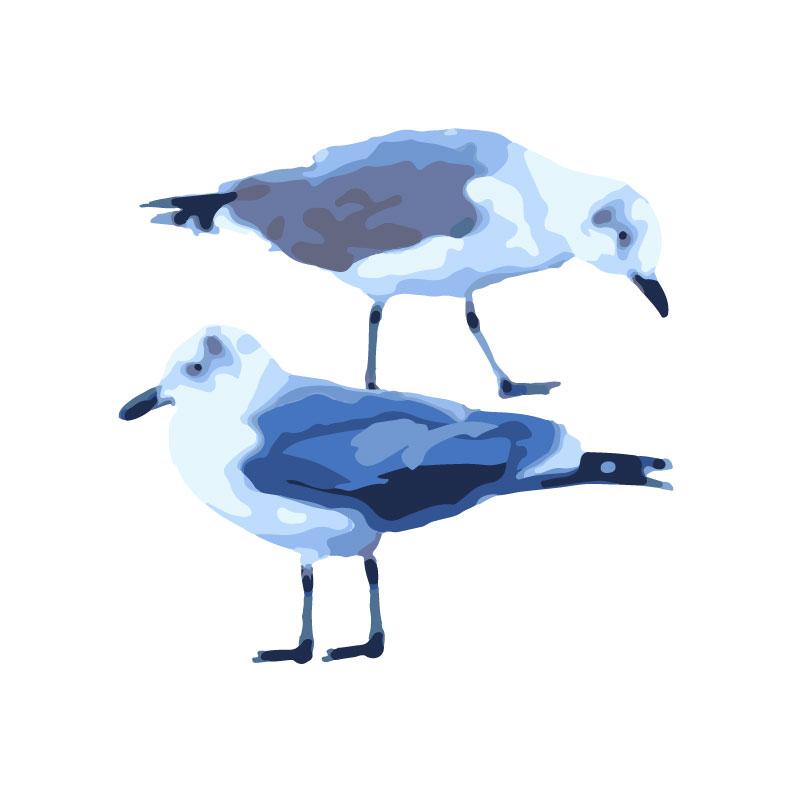 Sullivan's Island Seagulls