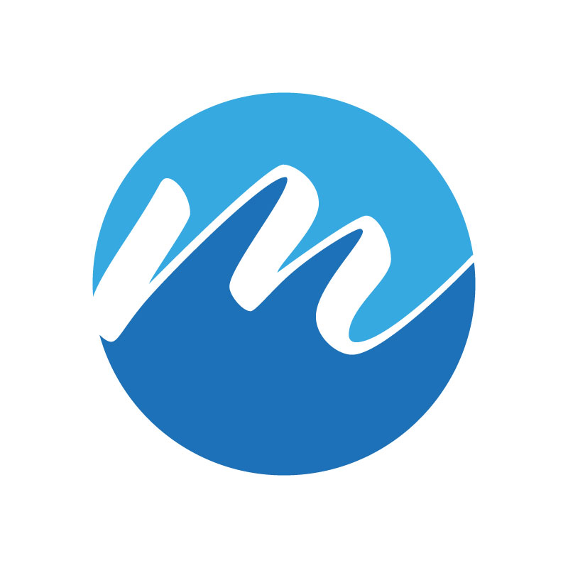 M&S Services Logo