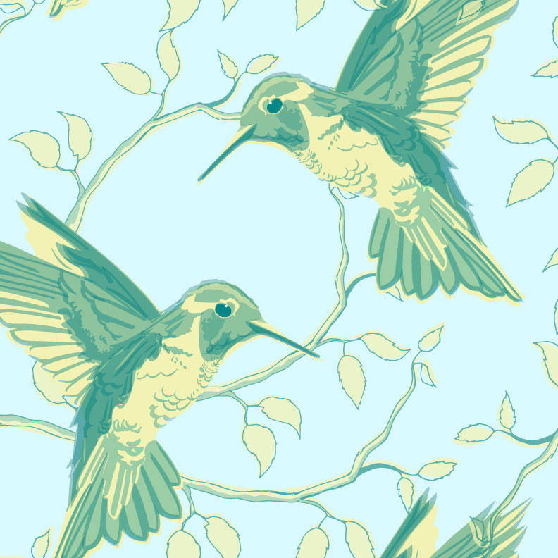 Hummingbird-patterns_portfolio.jpg