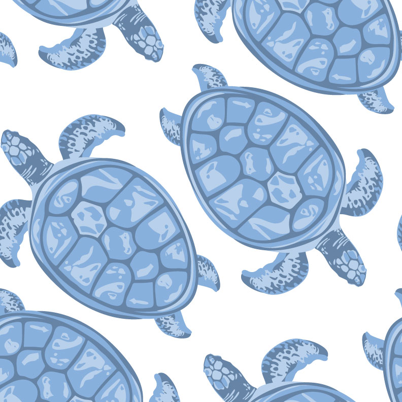 turtle-pattern.jpg