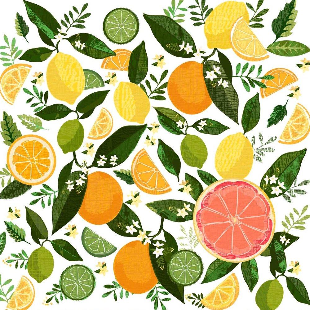 citrus-for-web.jpg