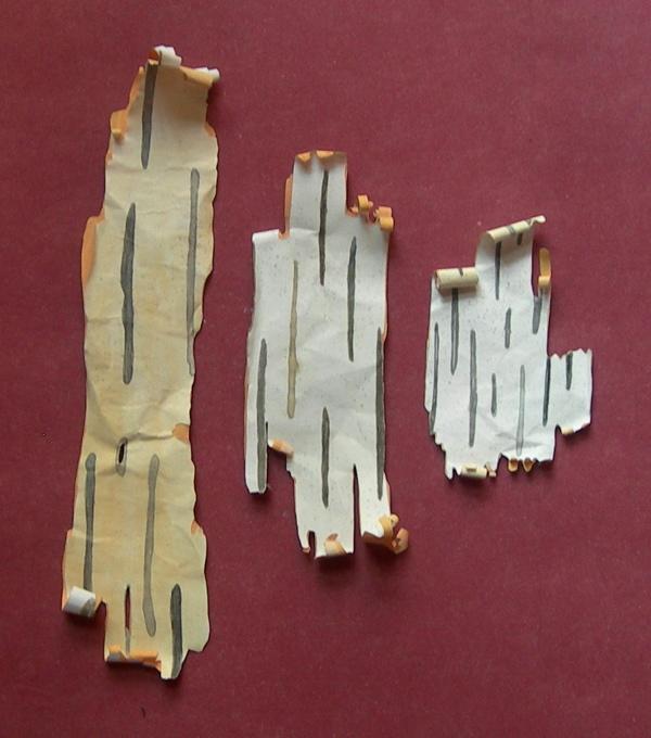 bits of birch bark, 2013