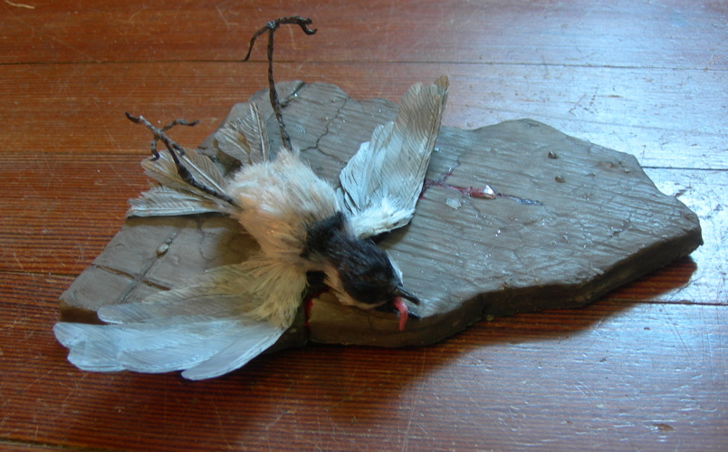stuffed chickadee, 2010