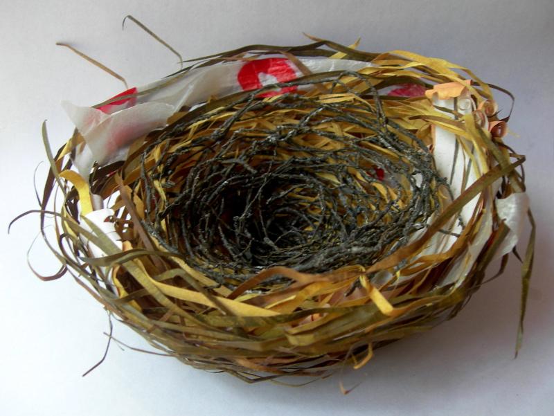 nest, 2013