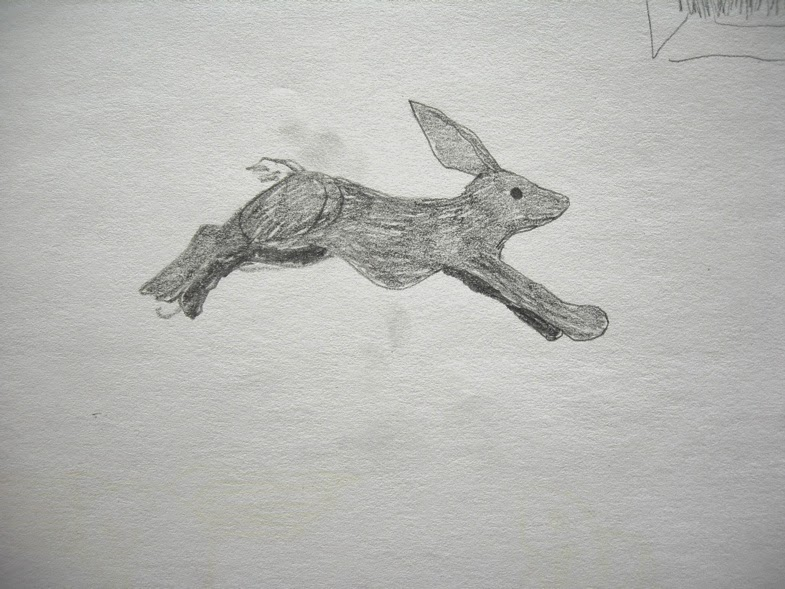 flying rabbit.JPG