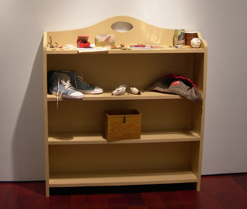 bookshelf, 2008