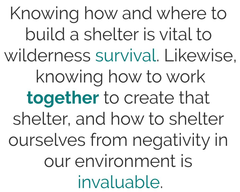 Shelter Blurb (1).png