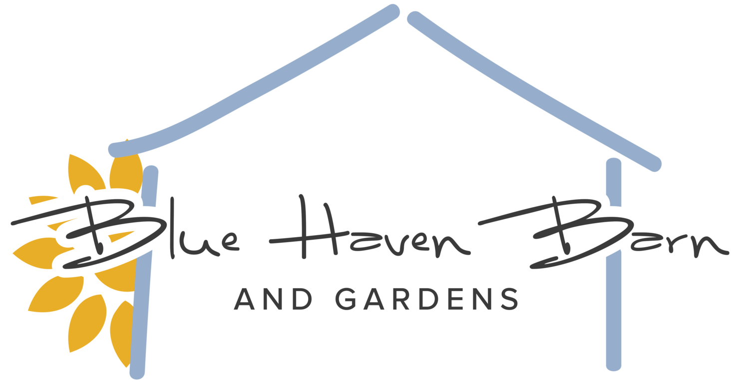 Blue Haven Barn and Gardens