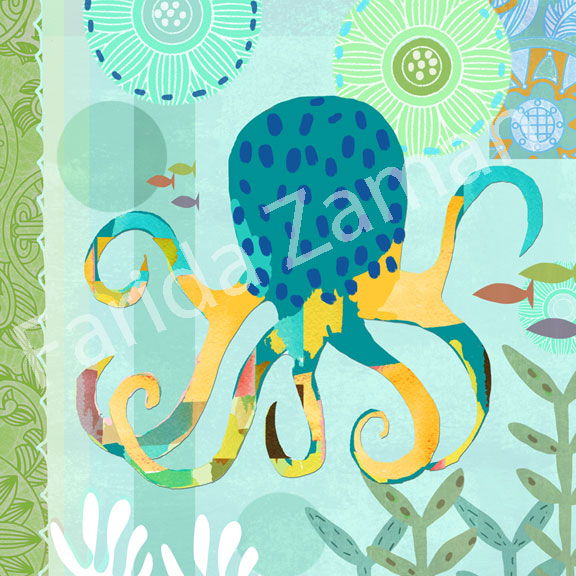 ZAM_BLUE-OCTOPUS_COASTAL_0141.jpg