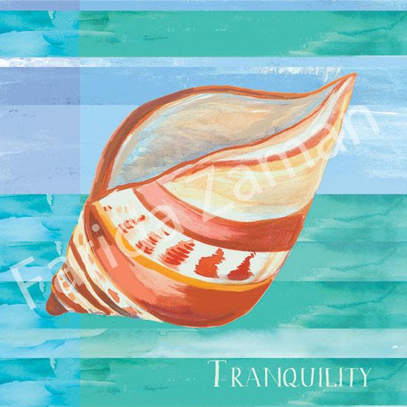Zam_Tranquility-shell_coastal_0151.jpg
