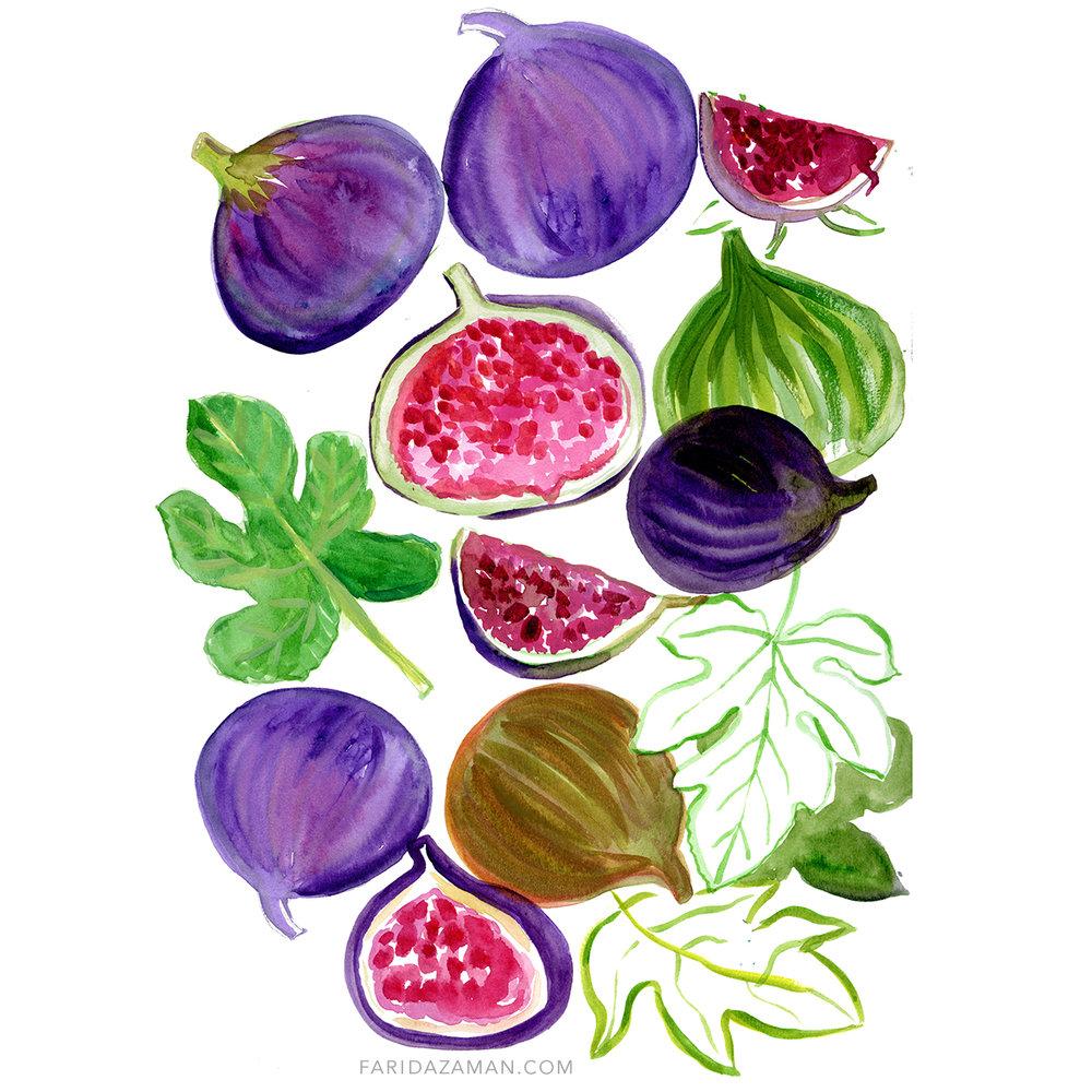 figs 150.jpg