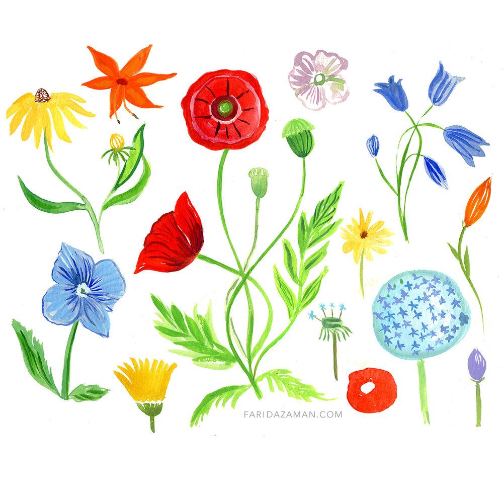 wild flowers 150.jpg