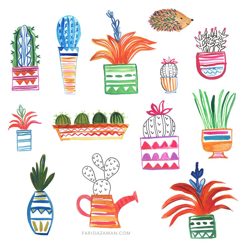 cactus2 150.jpg