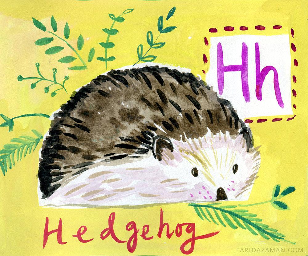 HEDGEHOG150.jpg