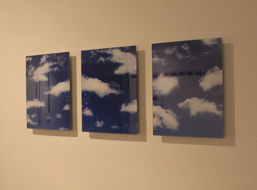 Laura Phelps Rogers, Digital Images on Aluminum, Dimensions Variable.jpg