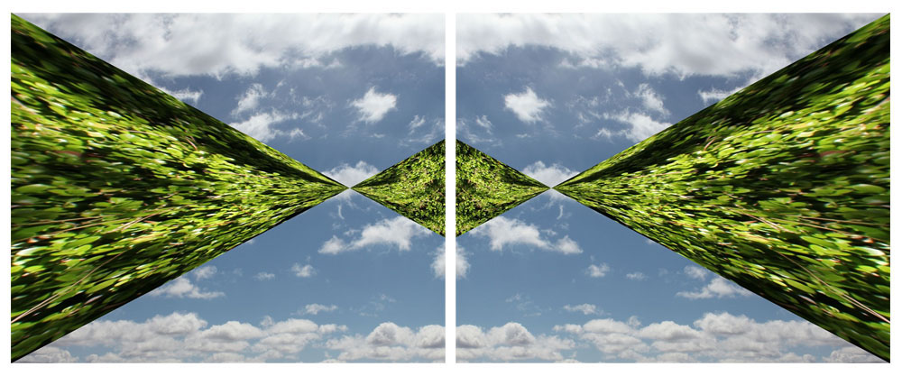 Time Warp, Laura Phelps Rogers, Framed Diptych, Digital Photographs, Dimesions Variable 2016.jpg